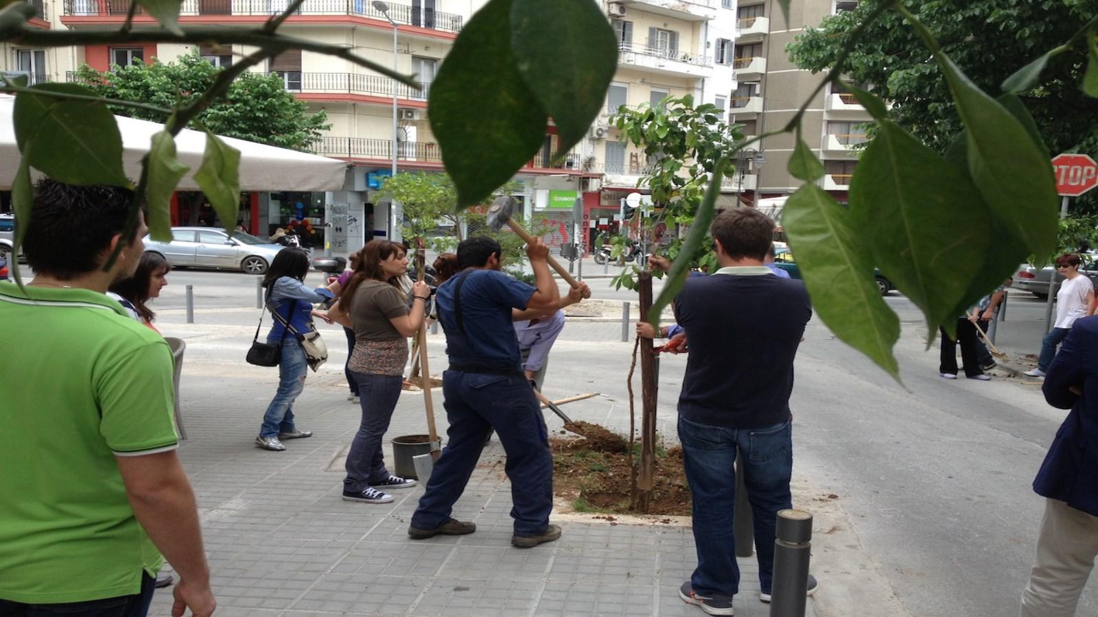 Δενδροφυτεύσεις πάνω από 6.000 δέντρων
